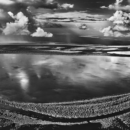 © Sebastião Salgado/Contrasto Anavilhanas, isole boscose del Río Negro. Stato di Amazonas, Brasile, 2009.