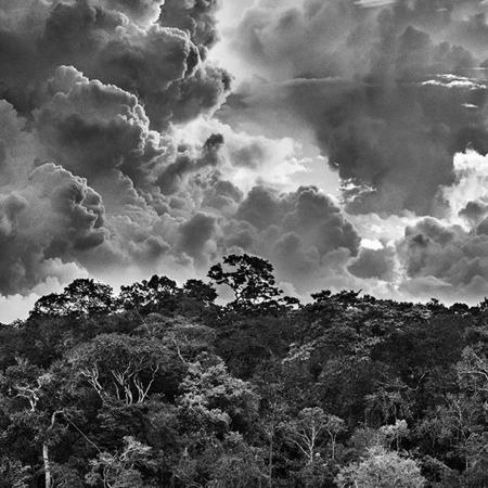 © Sebastião Salgado/Contrasto Arcipelago fluviale di Mariuá. Rio Negro. Stato di Amazonas, Brasile, 2019.